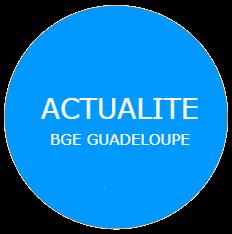 QUINZAINE DE L'ESS: TABLE RONDE DLA DEPARTEMENTAL GUADELOUPE