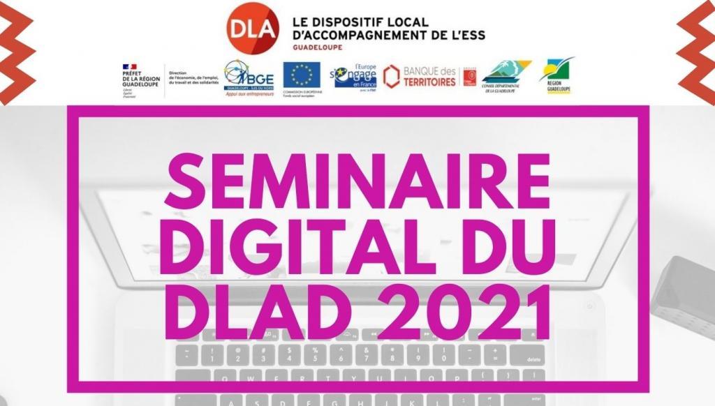 SEMINAIRE DIGITAL DU DLAD 2021 - 2ème édition