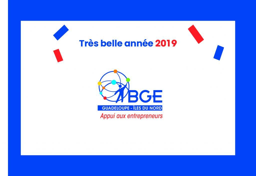 La BGE Guadeloupe vous souhaite une année 2019 pleine de réussite,