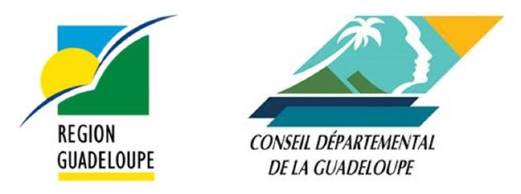 Faites votre demande de Fond Territorial de Secours ESS de la Guadeloupe